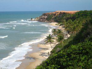 zaca pelo brasil praia da pipa