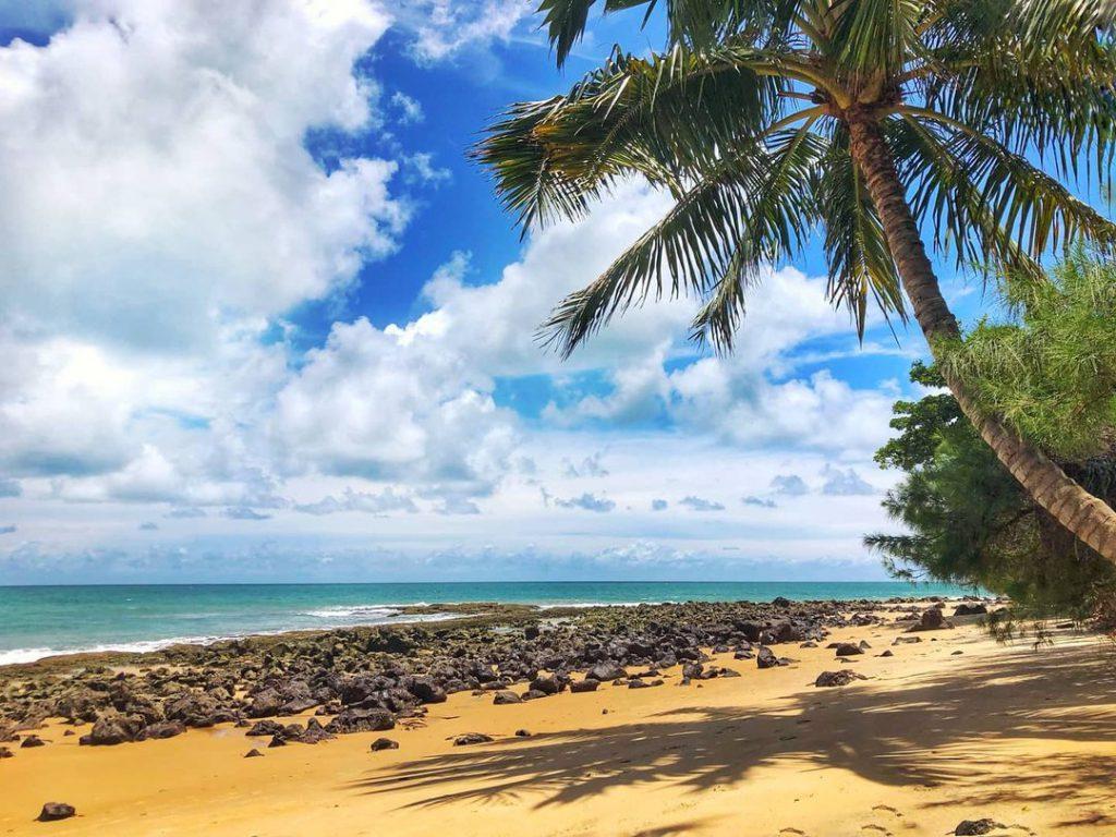Rally do Sertões 2021: Saiba mais sobre a largada na Praia da Pipa